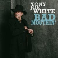 tony joe white bad mouthin vinyl