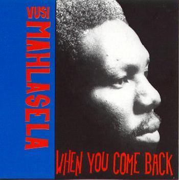 Photo of Vusi Mahlasela - When You Come Back